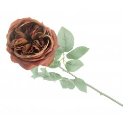 Garden Rose - Burnt Orange/Brown (50cm long)