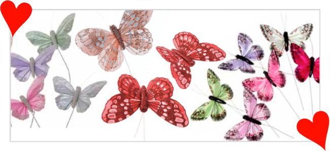 9.-butterflies