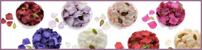 5.-petals