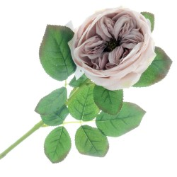 Garden Rose - Antique Mauve (50cm long)